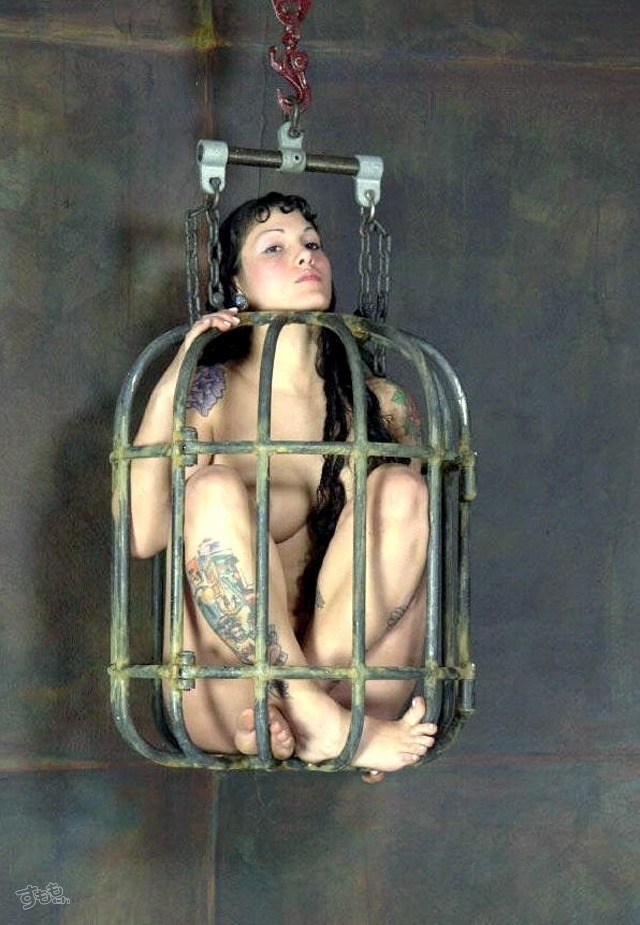 cage_5916-015