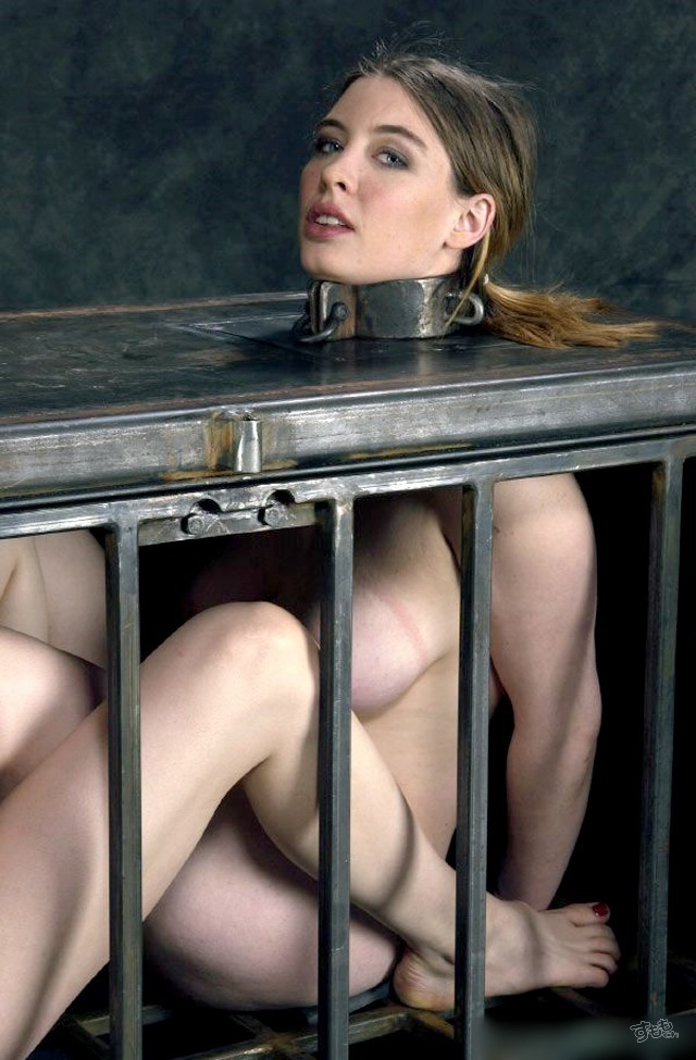 cage_5916-008