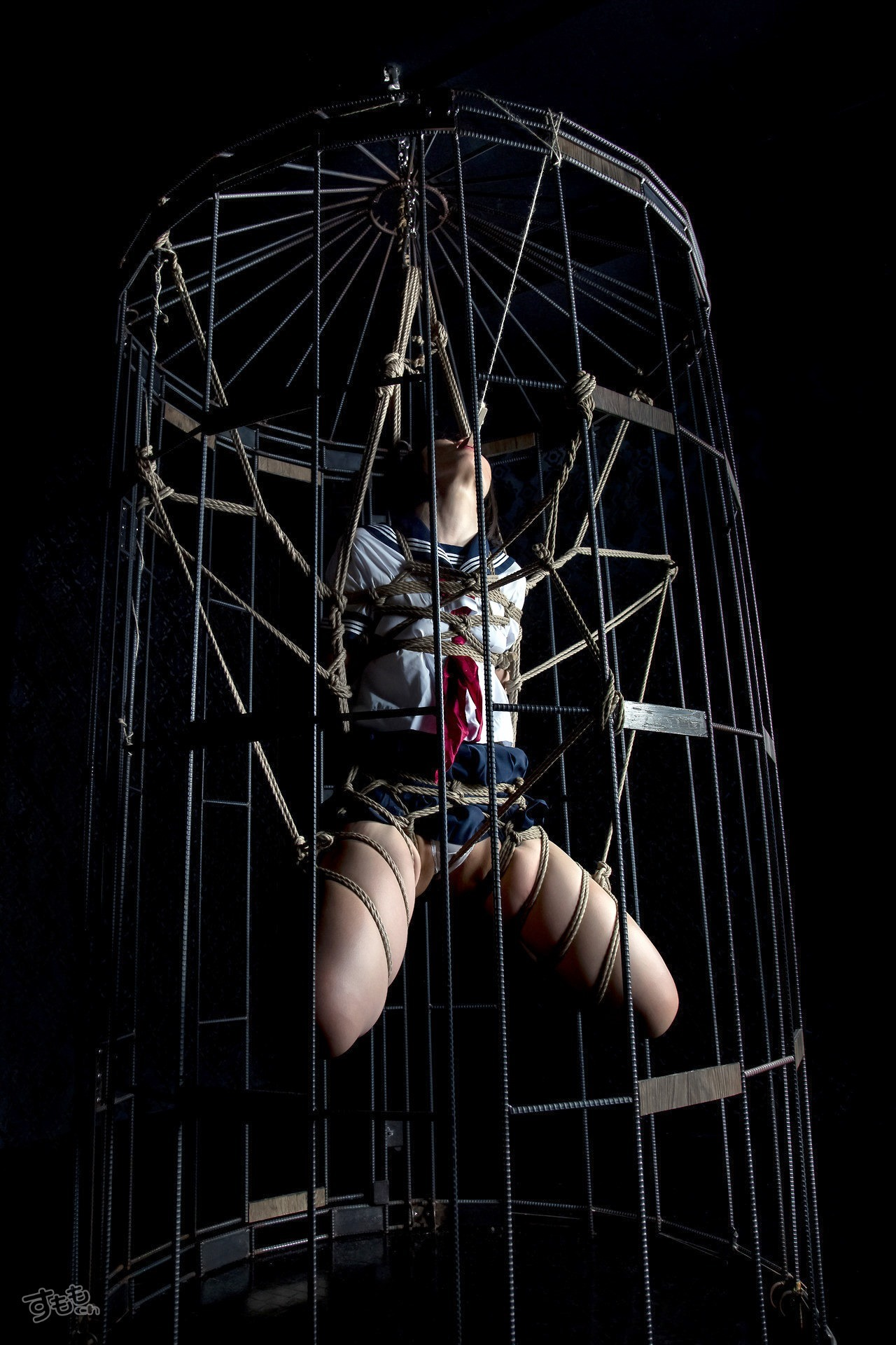 cage_5916-019