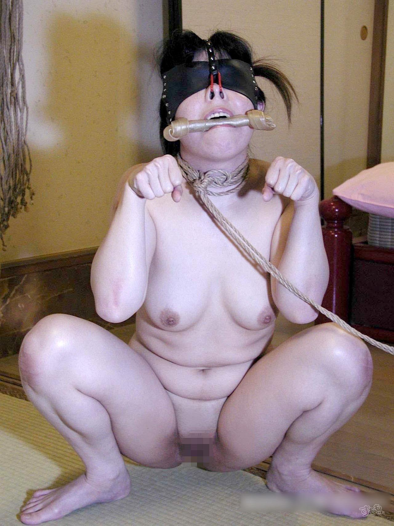 nose_hook_5339-024