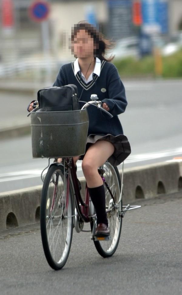 自転車 ぱんちら